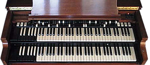 picture of organ